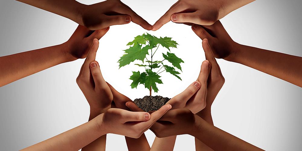 Klare ökologische Unternehmensziele und ihre Definition
